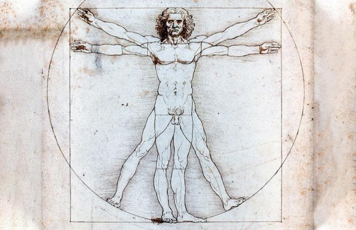 L'home de Vitruvi, de Leonardo Da Vinci, es un estudi de la proporció del cos humà